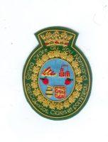 P O 29009 badge 90 mm
